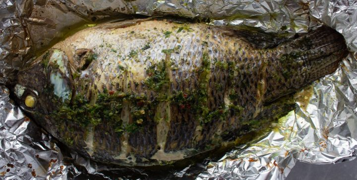 Grilled fish seasoned with Jamaican green seasoning